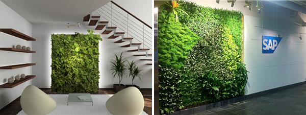 Indoor gardens - 2