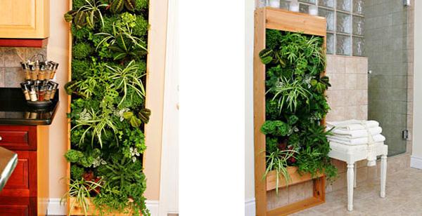 Indoor gardens - 5