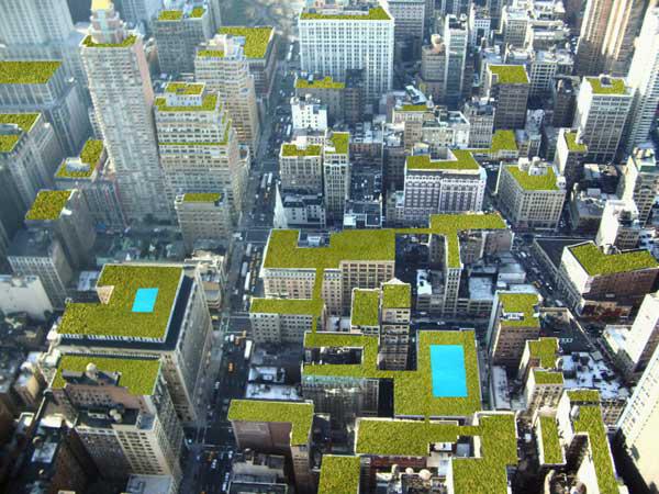 Mάθετε για τις «Πράσινες Στέγες»