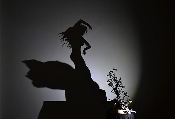 Φως και σκιά - 5