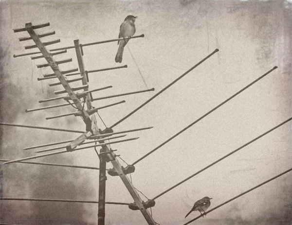 vintage φωτογραφίες 2